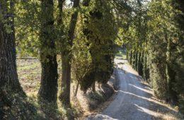 villa.giardinello.si.17-0328